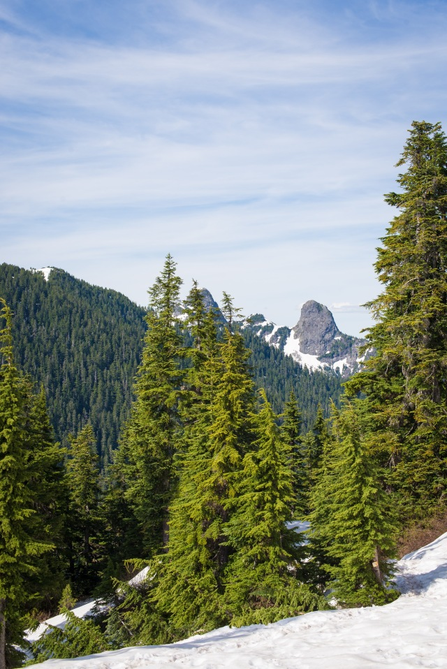 2016-06-05-cypress-st-marks-summit-043