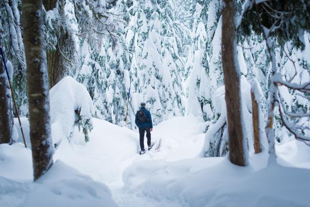 2016-12-23-cypress-snowshoeing-026