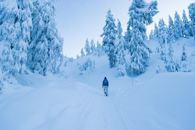 2017-01-01-snowshoe-hike-mt-seymour-029