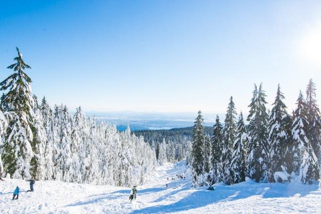 2017-01-02-snowshoe-hike-hullyburn-mountain-022