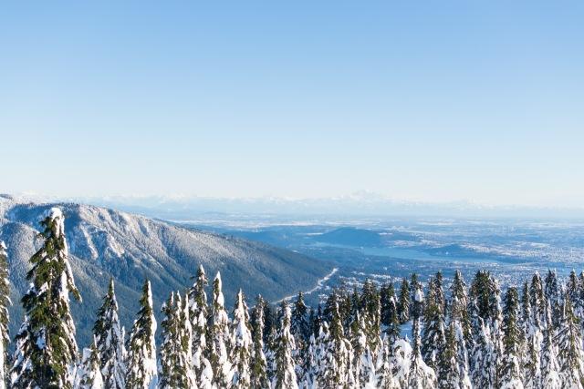 2017-01-02-snowshoe-hike-hullyburn-mountain-038