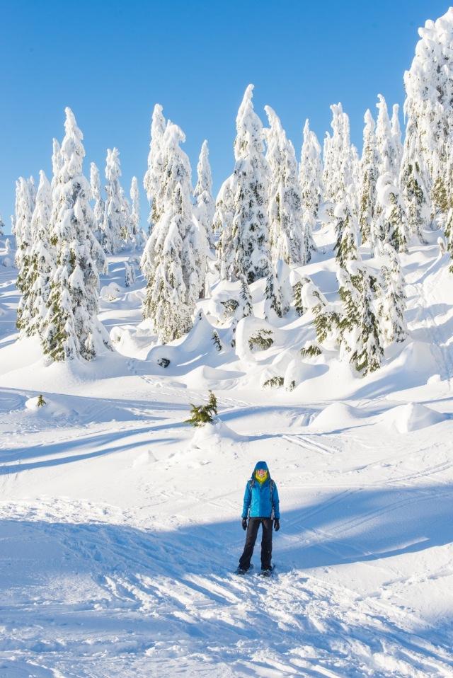 2017-01-02-snowshoe-hike-hullyburn-mountain-054