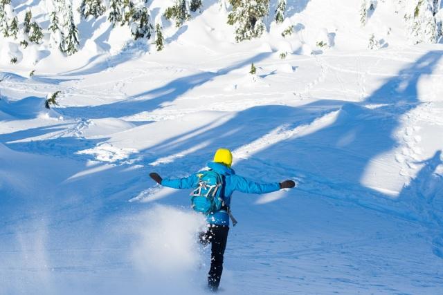 2017-01-02-snowshoe-hike-hullyburn-mountain-066