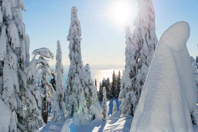 2017-01-02-snowshoe-hike-hullyburn-mountain-074
