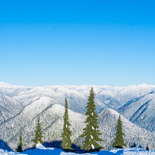 2017-01-02-snowshoe-hike-hullyburn-mountain-087